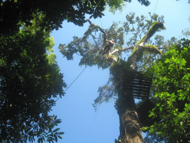 2013_1230_CostaRica_ZipLine_09_blog